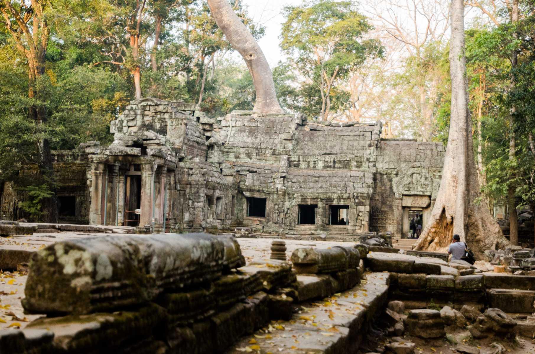 Cambodge - Angkor - Le temple de Ta Prohm, au pays d'Angkor