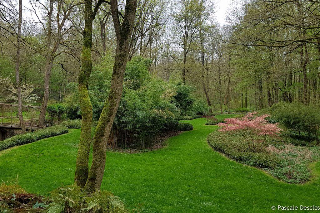 Arboretum, Domaine de Poulaines à Poulaines, près de Valençay, Berry