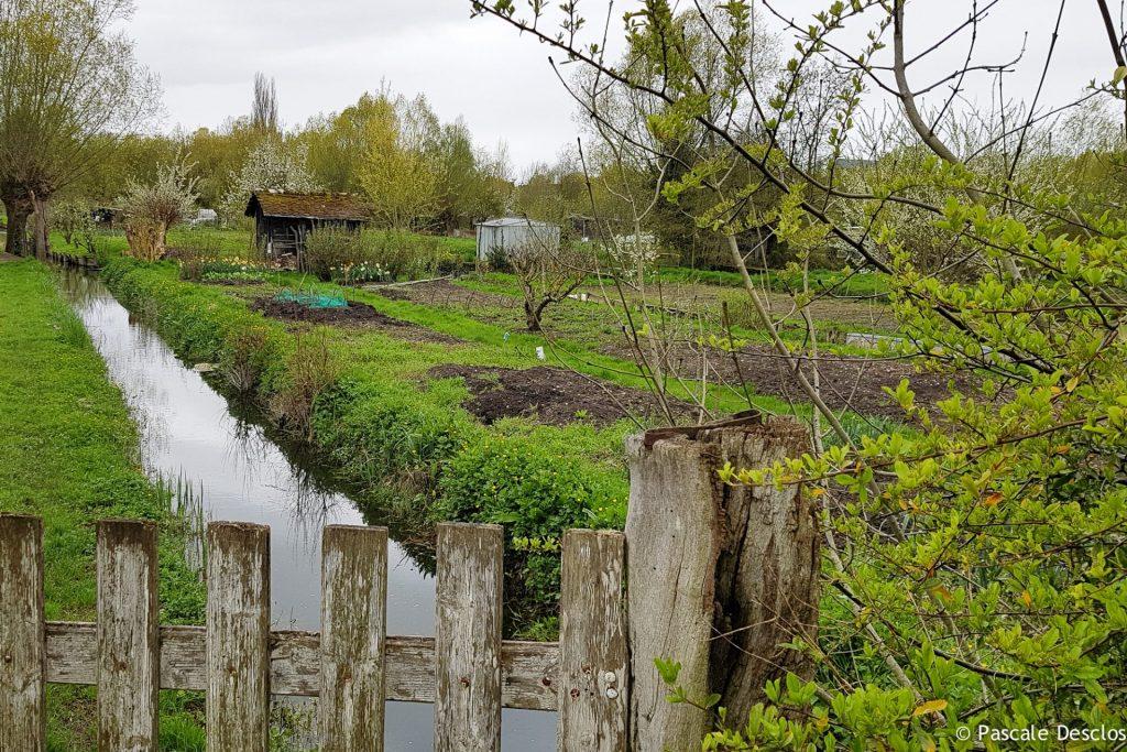 Jardins de marais de Bourges, Berry