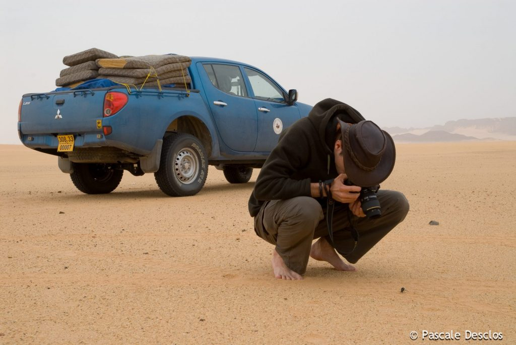 Chasse au scarabée dans le massif de la Tadrart rouge, Tassili N'Ajjer, sud Algérie