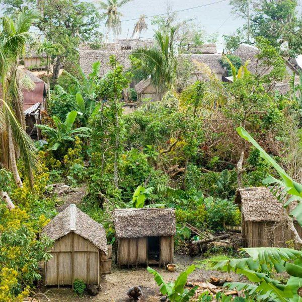 Afrique - Madagascar- Sainte-Marie - Cases en falafa sur la baie d'Ampanihy