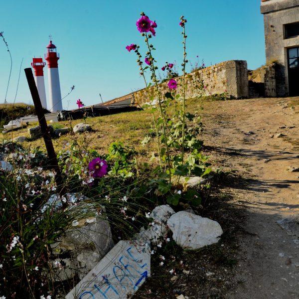 Pour trouver les phares de l'île d'Aix, suivez la flèche !