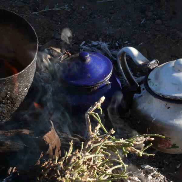Algérie - Atakor - Préparation du thé...