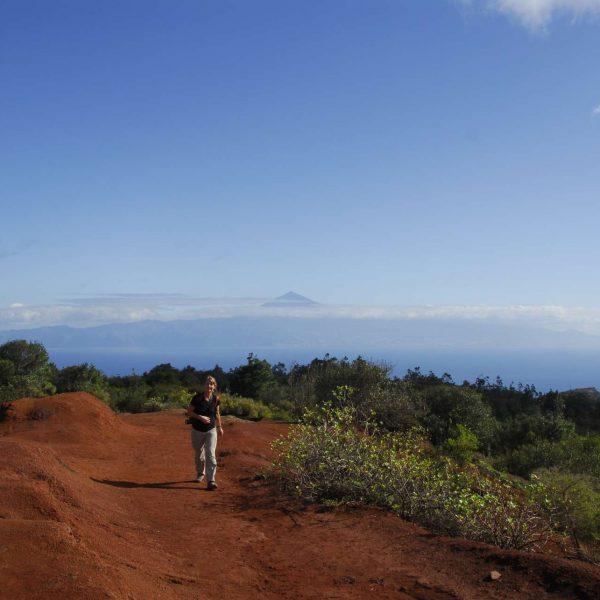 Canaries - Les terres rouges de la Gomera et le Teide.