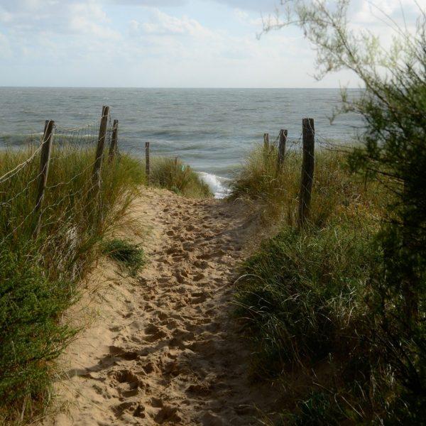 Sur le chemin de la plage