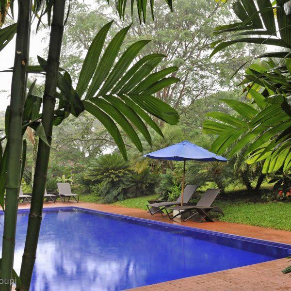 Colombie - Maison d'hôtes Sazagua près de Pereira, dans le Quindio