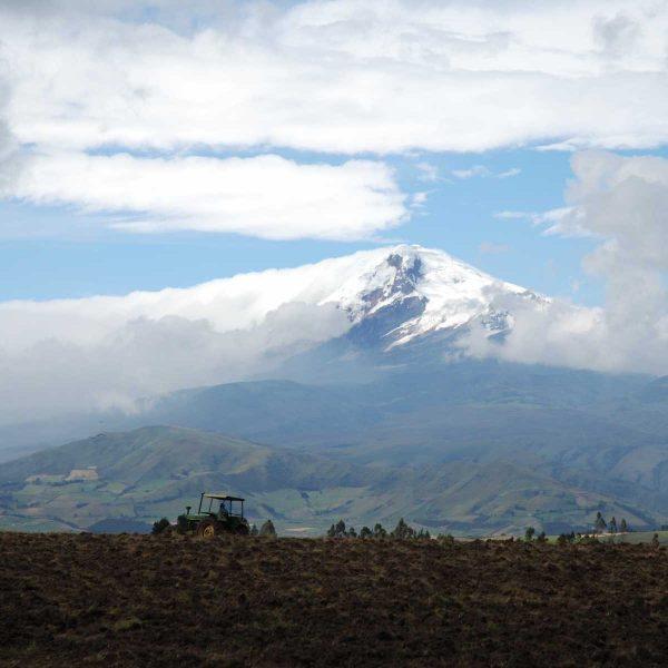 Equateur - Ruralité au pied du Chimborazo