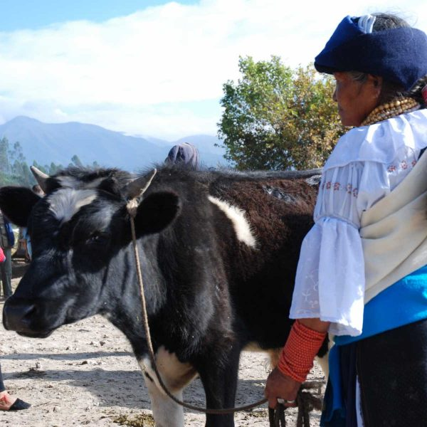 Equateur - Otavalo - Femme en tenue Quechua au marché