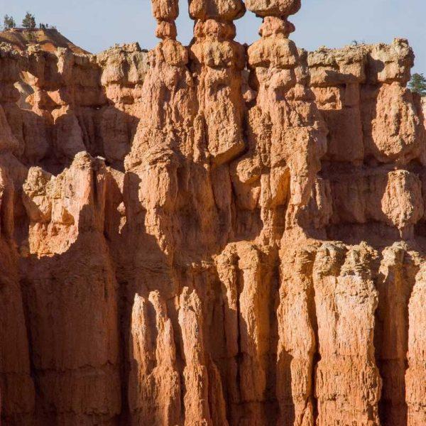 Etats-unis - Parcs de l'Utah - Hoodoos de Bryce Canyon