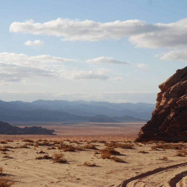 Jordanie - Pétra - Traces dans le Wadi Rum.